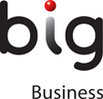 BIG Business Logo